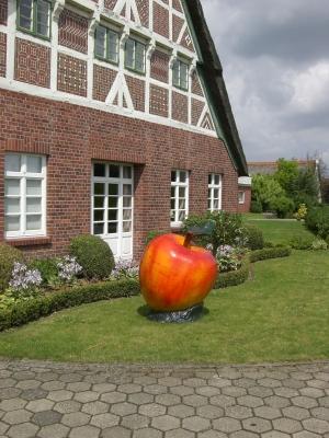 Altes Land & Äpfel - das gehört zusammen