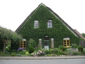 Altes Land - wo die Häuser im Grünen entspannen